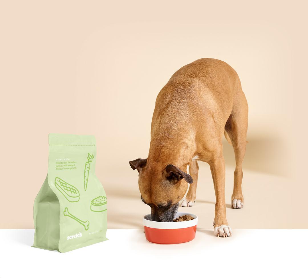 Scratch Pet Food